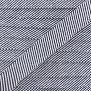 biais-raye-marine